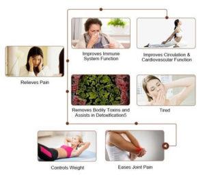 Carefit-Korean Jade Therapeutic Massage Beds & Mats No Middleman